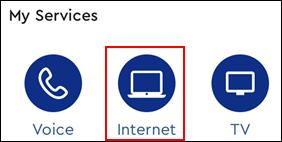 Image of Internet Icon