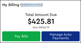 Image of My Billing section