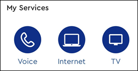 Image of My Services section