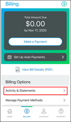 Image of Billing Screen View Statements