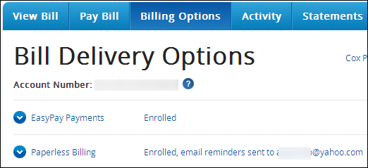 bill delivery options