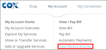 View Recent Payments