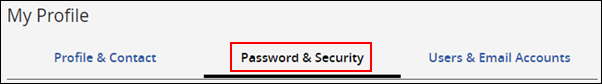 image of the password and security tab location