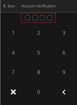 Mobile App - Account Verification screen