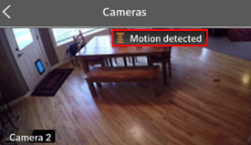 Image of Camera Motion Detected