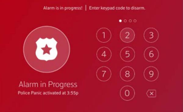 Image of Emergency Disarm Keypad