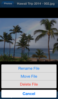 File Mangement options
