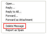 delete message option